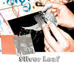 Silver Leaf Book of Sheets
